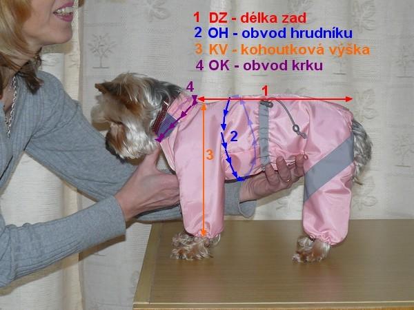 měření pejska